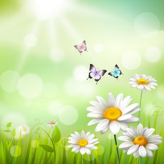 夏の草原の背景