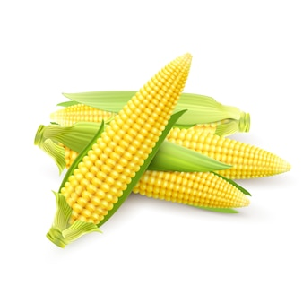 Реалистичные кукурузные початки