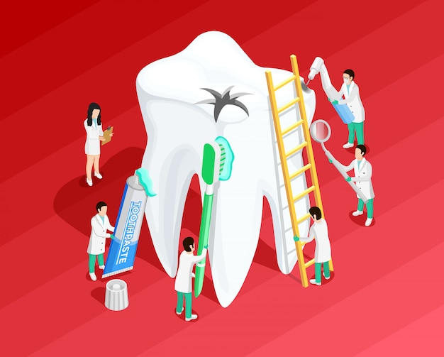 医療歯科等尺性テンプレート