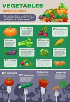 野菜のインフォグラフィックセット