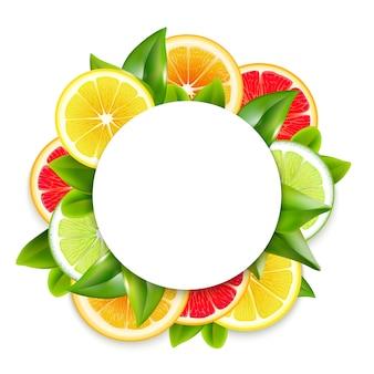 柑橘系の果物スライスアレンジラウンドフレーム