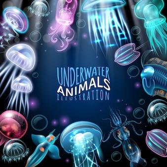 水中動物フレームの背景
