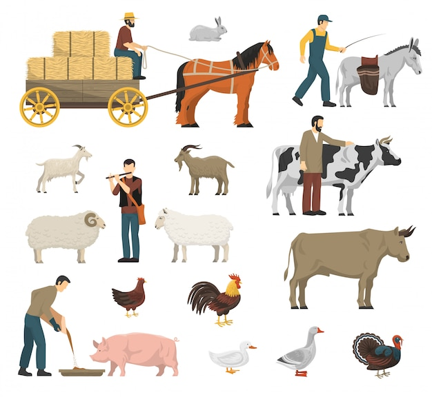 農場の動物セット