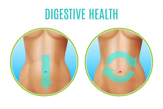 Пищеварительное здоровье реалистичный дизайн