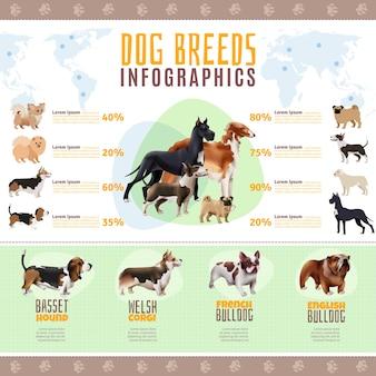 犬の品種インフォグラフィックテンプレート