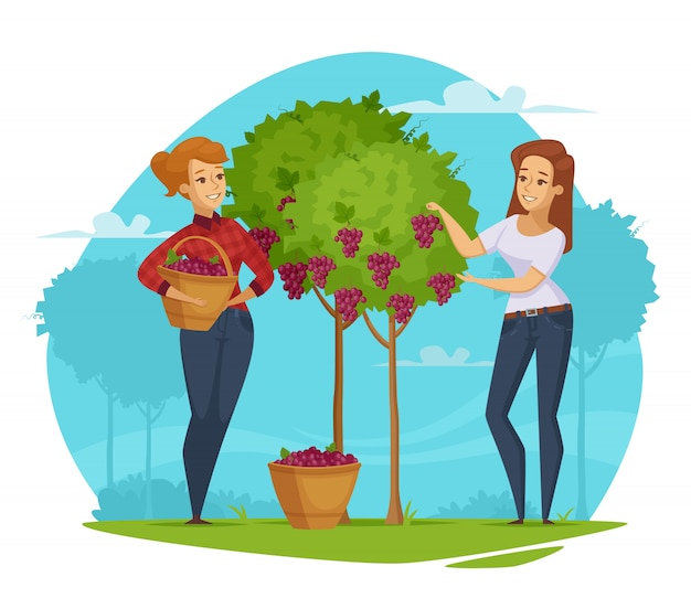 Винодельня виноградная сборка мультфильм композиция