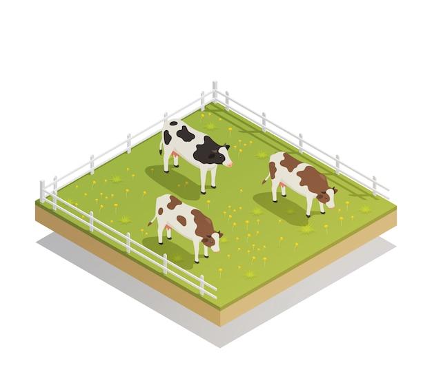 Изометрическая композиция молочных пастбищ