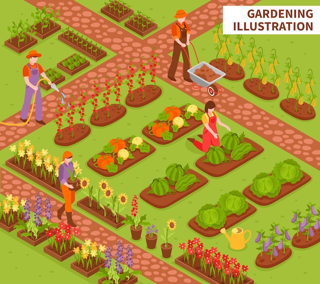 Садоводство изометрические композиции