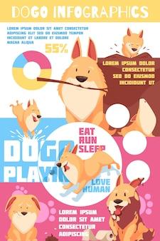 Инфографика поведения щенка с диаграммами