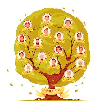 Генеалогический древовидный набор членов семьи от пожилых людей до иллюстрации молодого поколения