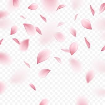 落ちてくるピンクの桜の花びらのリアルなイラスト
