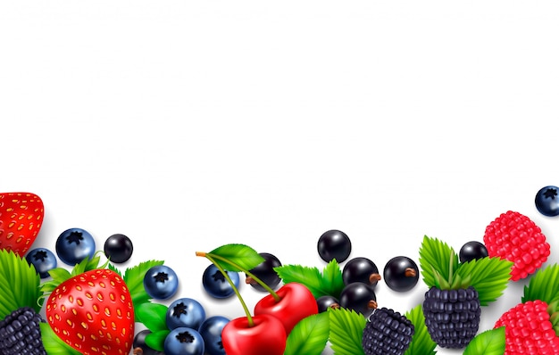 空白の空スペースと葉と果実の画像とカラフルなフレームとベリー果実の現実的な背景