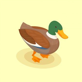 Птица с цветной уткой изометрической значок в мультяшном стиле на желтом