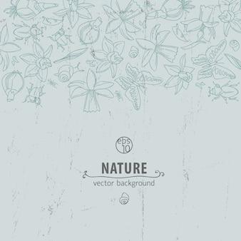 Цветы нежных цветов с изолированными элементами, хаотично размещенными сверху и заголовком