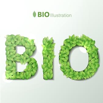 緑の葉のガーランドフォントの文字で書かれたバイオテキストと生態
