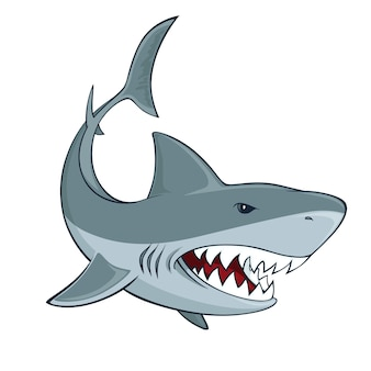 Знак акулы