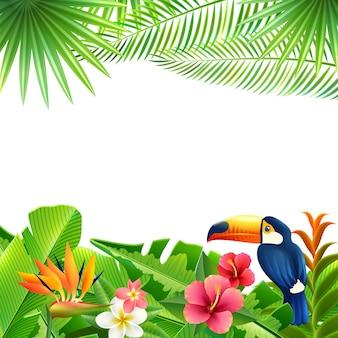 熱帯の風景の背景