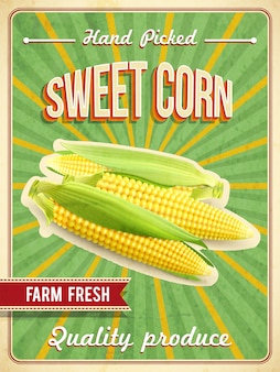 Плакат сладкой кукурузы