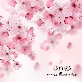 Розовая вишня сакура печать