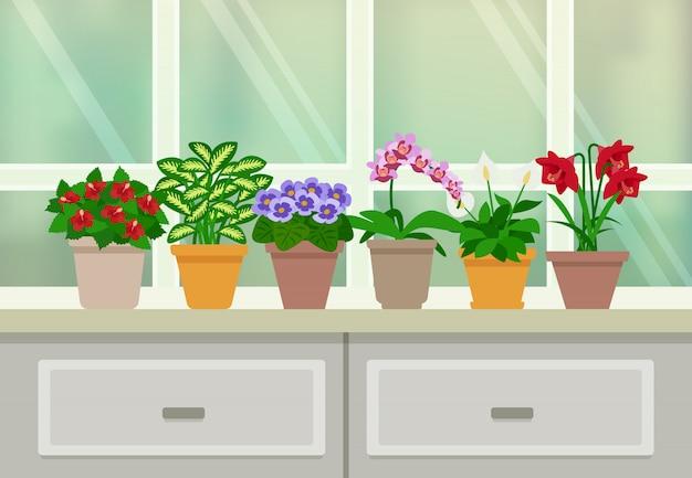 Комнатные растения фоновой иллюстрации