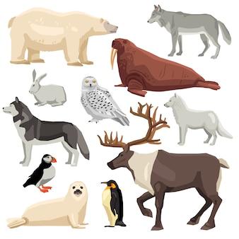極地動物セット