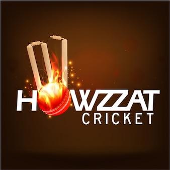 Коричневый фон с крикет мяч в огне