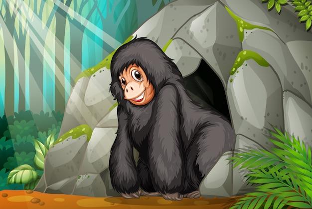 Шимпанзе стоит перед пещерой
