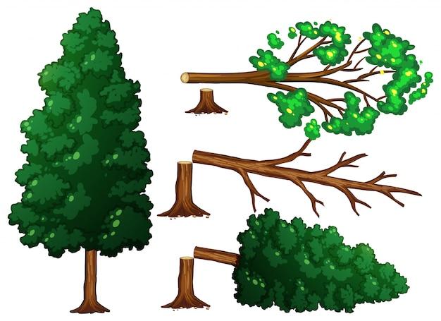 Набор отрезанных деревьев