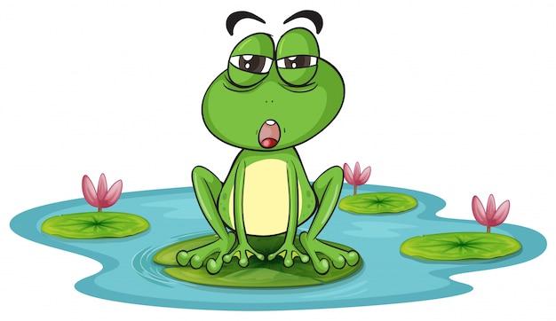 カエルと水