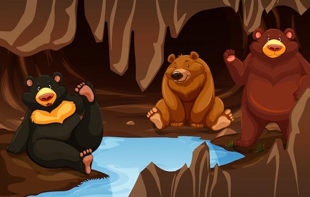 洞窟に住むクマの家族