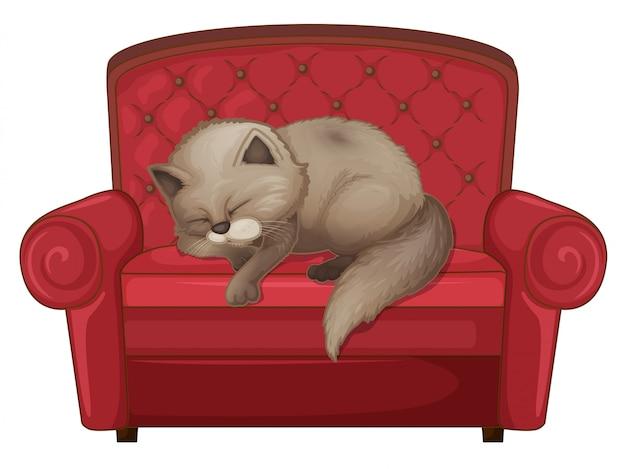 ソファーで眠っている猫