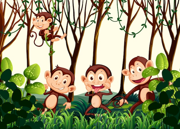 ジャングルに住む猿