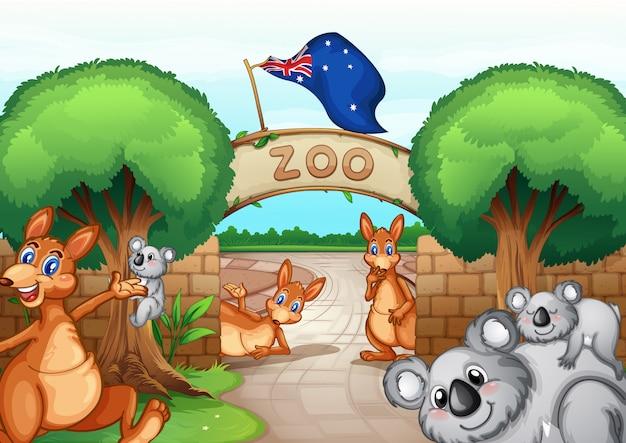 動物園のシーン