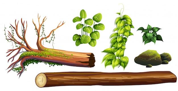 森林の要素のセット