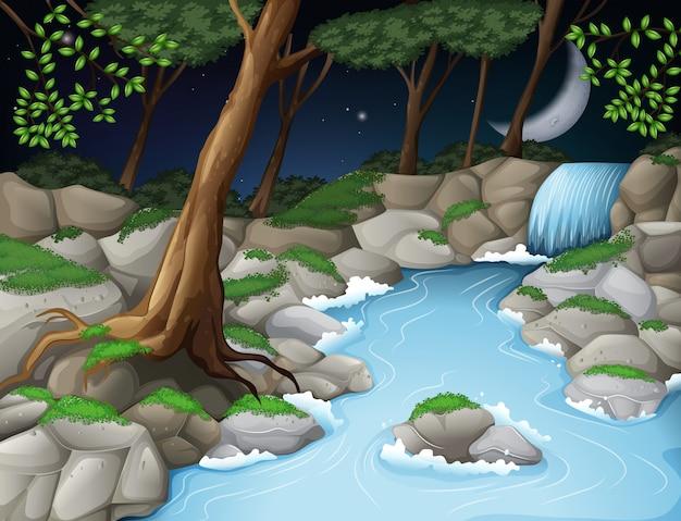 夜の美しい木の風景