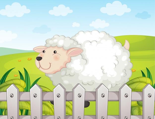 Улыбающаяся овца