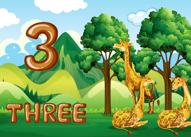 Три жирафа в природе