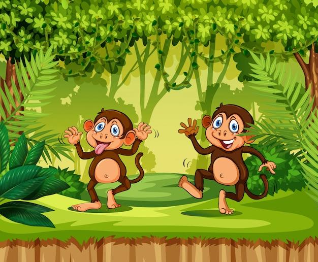 Игривая обезьяна в джунглях