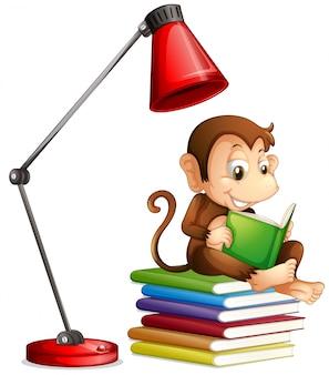 白い背景に猿の読書