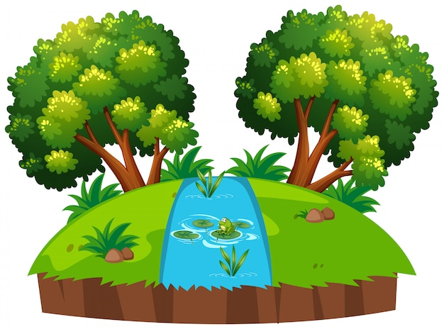 孤立した川の池