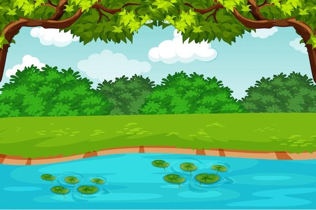 緑の池の自然のシーン