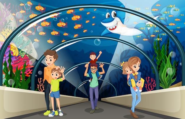 Люди смотрят на рыб в аквариуме