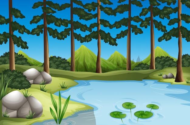 Лесная сцена с деревьями и рекой