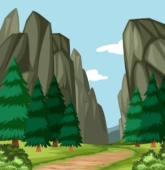 美しい木の峡谷のシーン