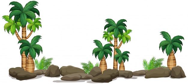 孤立した自然植物の要素