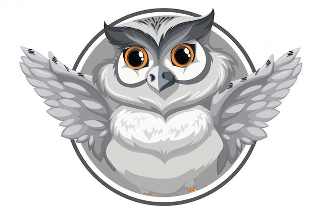 灰色のフクロウのバナー
