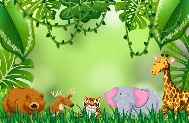 ジャングルの中で野生動物