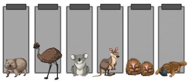 灰色の枠線にオーストラリアの動物のセット