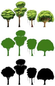 Набор различного дизайна дерева