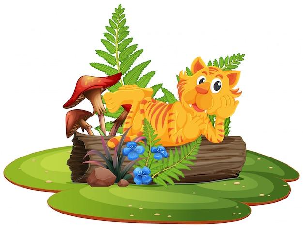 Тигр на бревне дерева